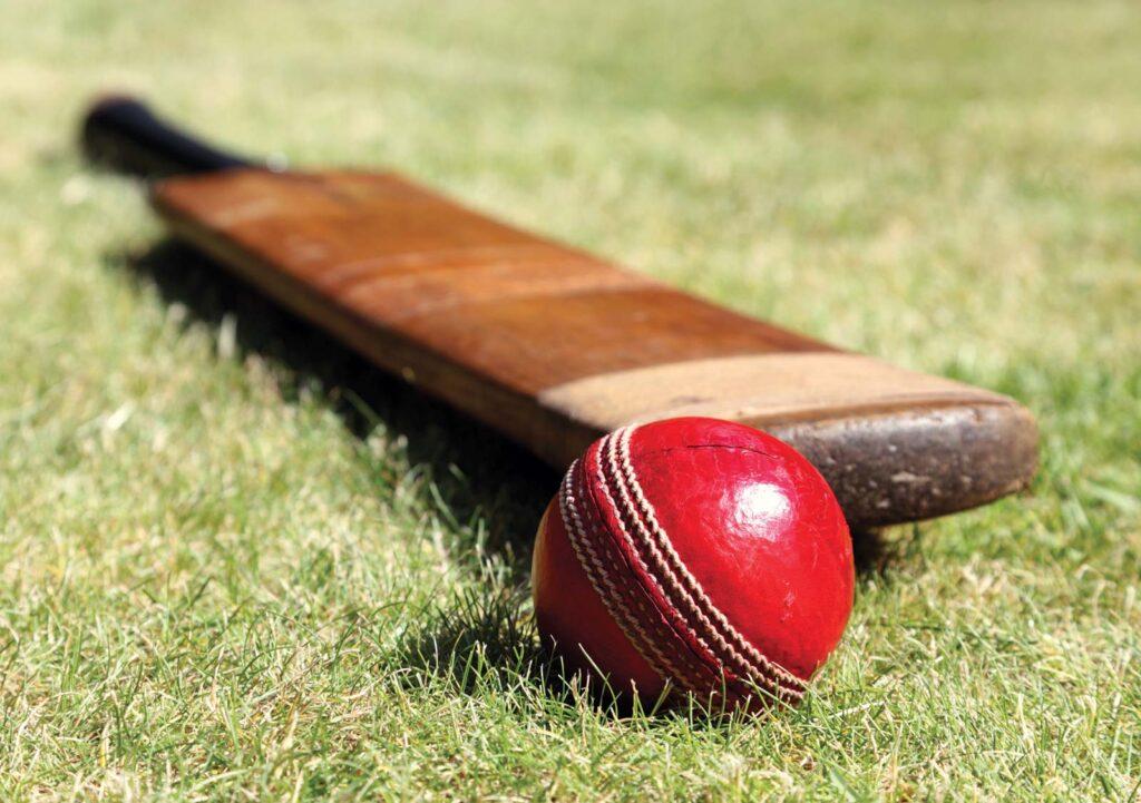 Australia One Day Cup Dream11 Prediction Fantasy Cricket Tips Dream11 Team