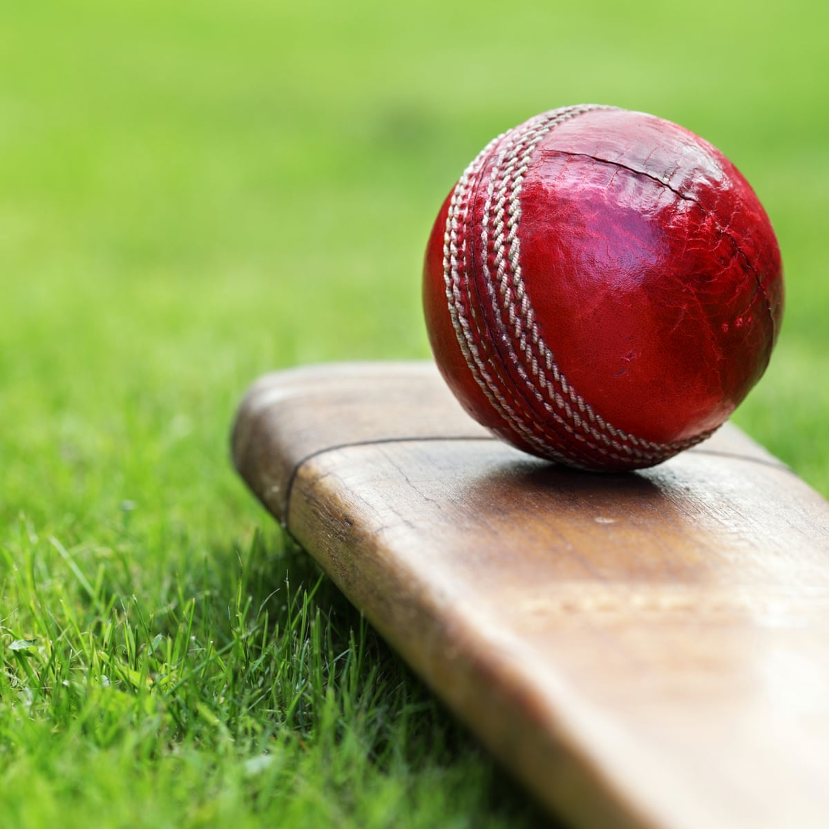Women's Senior One Day Trophy Dream11 Prediction Fantasy Cricket Tips Dream11 Team