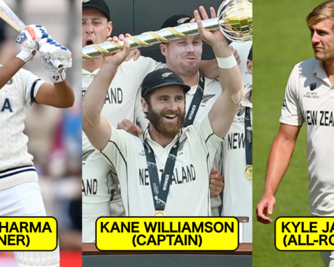 ICC World Test Championship: Best Combined XI Of The Final
