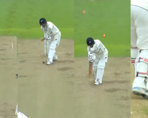 ICC WTC Final: Mohammed Shami Knocks Over BJ Watling With A Jaffa - Watch Video