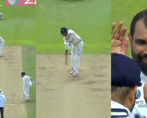 Watch: Mohammed Shami Traps Colin De Grandhomme Plumb In Front