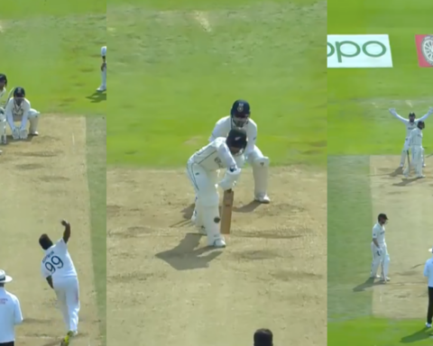 Watch: Ravichandran Ashwin Traps Devon Conway Plumb In Front