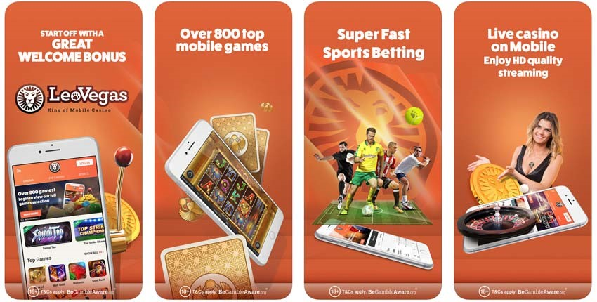 Cricket betting app in India