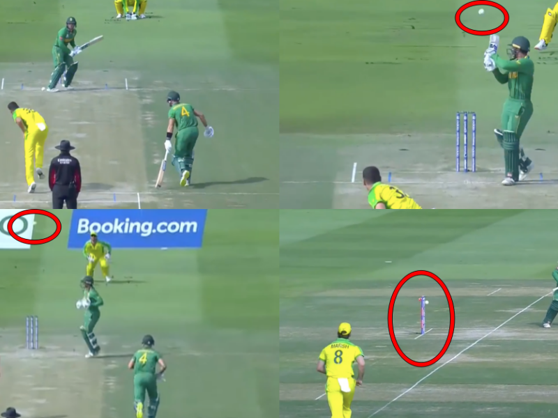 T20 World Cup 2021: Watch - Quinton de Kock Gets Dismissed By Josh Hazlewood In A Comical Fashion
